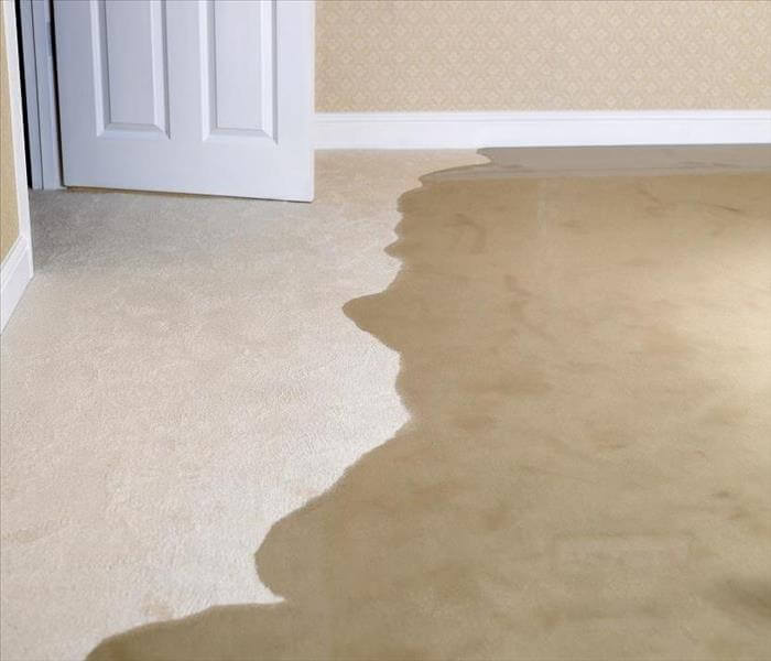 Cheap water damage restoration services in Melbourne